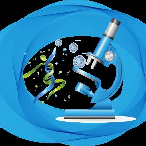 testare genetică în reproducere